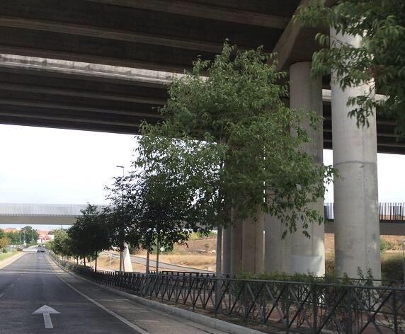 Puente La_Fortuna