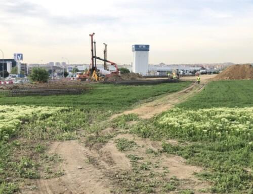 """Fechoría medioambiental en la construcción de la """"rotonda de la vergüenza"""""""